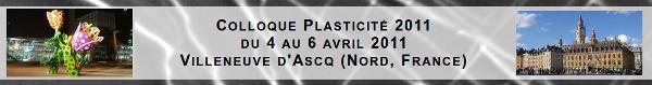 Plasticité 2011 à Villeneuve d'Ascq